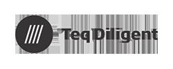 TEQ DILIGENT Logo